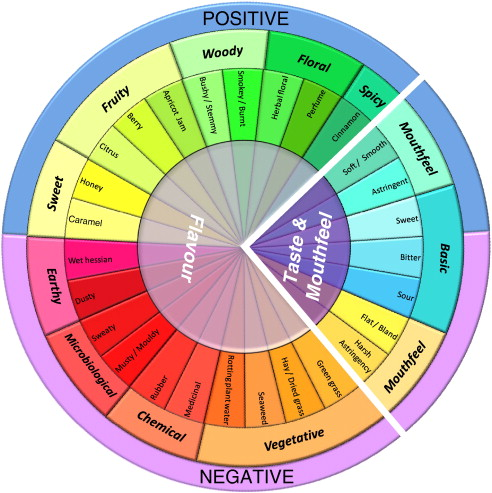 rooibos flavour wheel